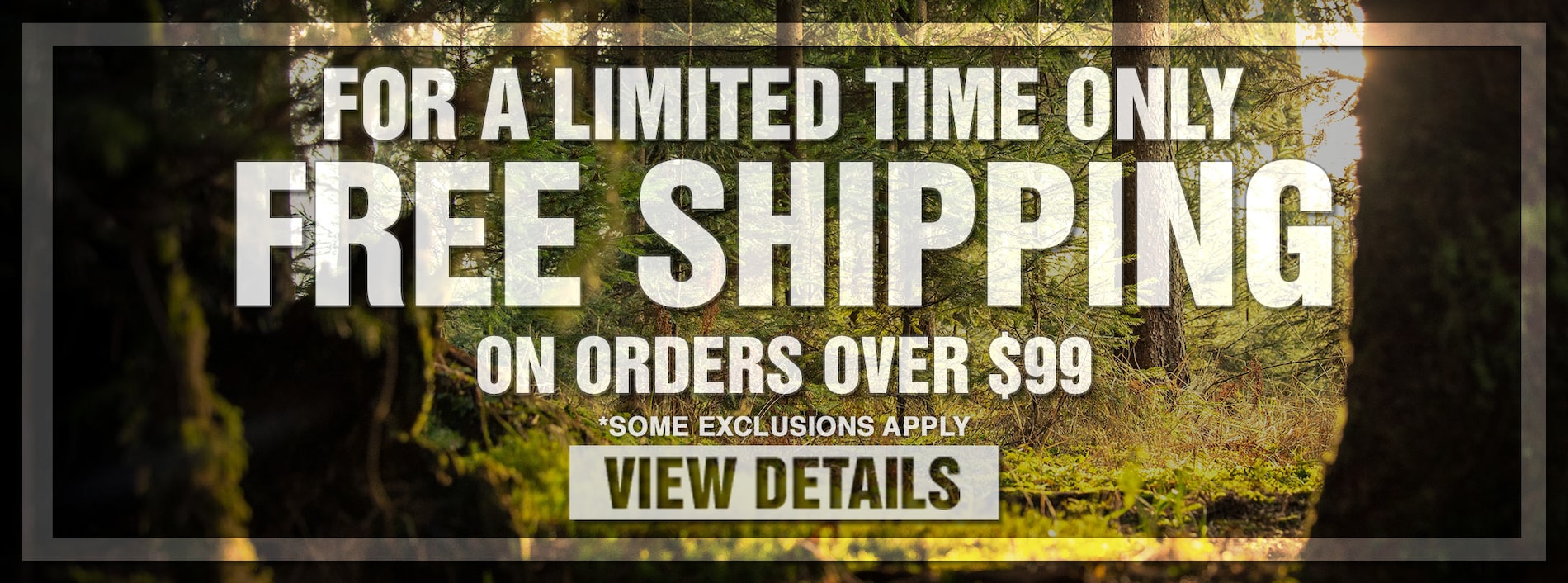 Free Shipping on $99 Orders