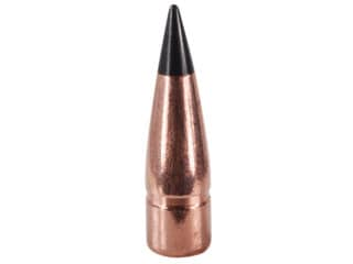 Barnes Tipped Tac Tx Bullets 300 Aac Blackout 300 Whisper