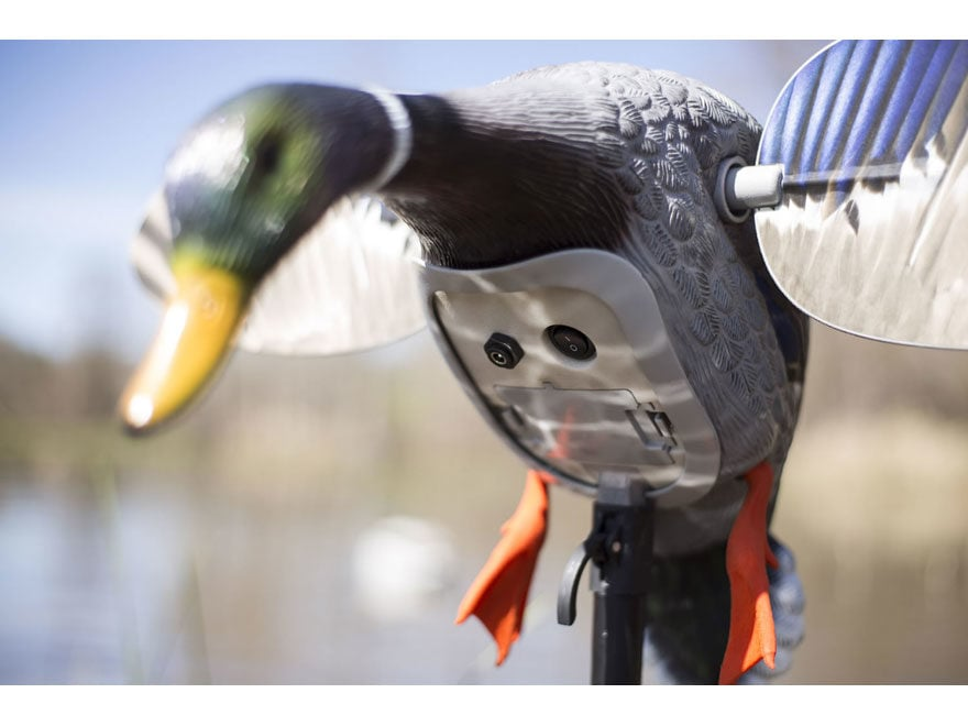 MOJO King Mallard Motion Duck Decoy