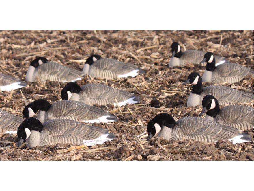 GHG Pro-Grade Honker Harvester Goose Decoy Shells Pack of 12