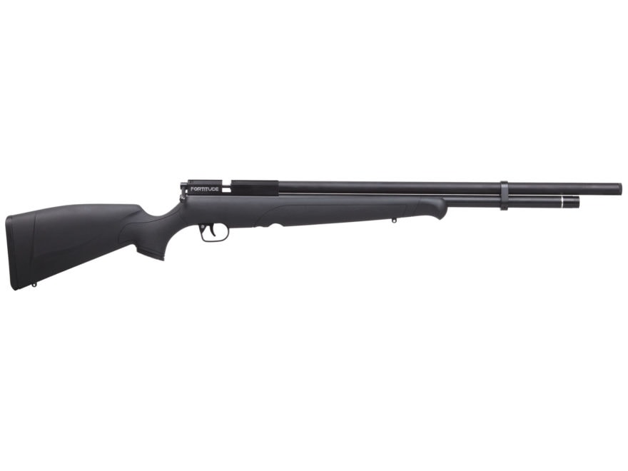 Benjamin Fortitude PCP Air Rifle