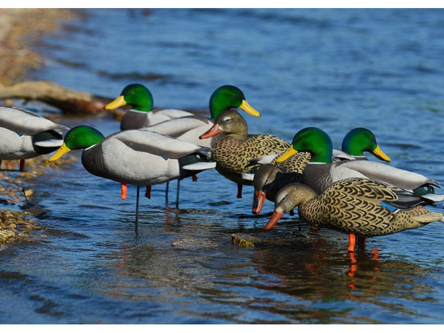 GHG FFD Elite Mallard Harvester Full Body Duck Decoy Pack of 6