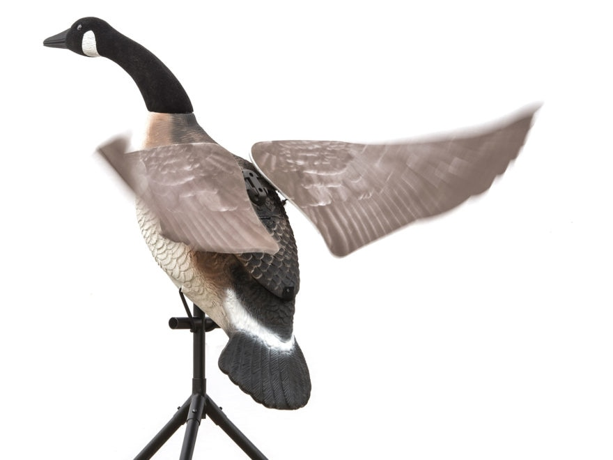 Lucky Duck Lucky Flapper Canada Goose Motion Decoy