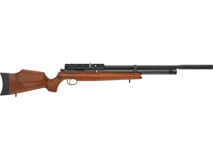 Hatsan AT44W-10 QE PCP Air Rifle