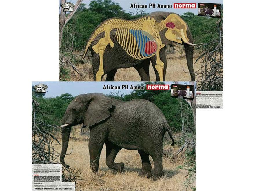 Safari Press Perfect Shot Big Five Target Leopard, Elephant, Black Rhino, Lion, and Buf...