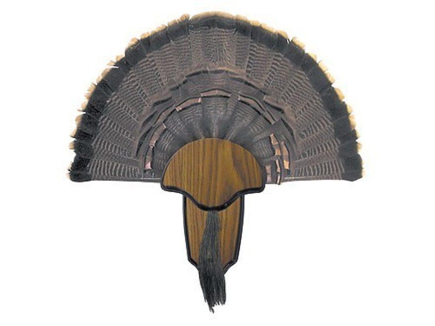 H.S. Strut Tail and Beard Turkey Mounting Kit