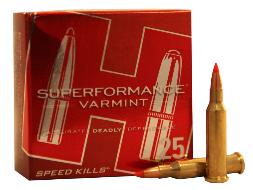 Hornady Superformance Varmint Ammunition 17 Hornet 20 Grain V-MAX Box of 25