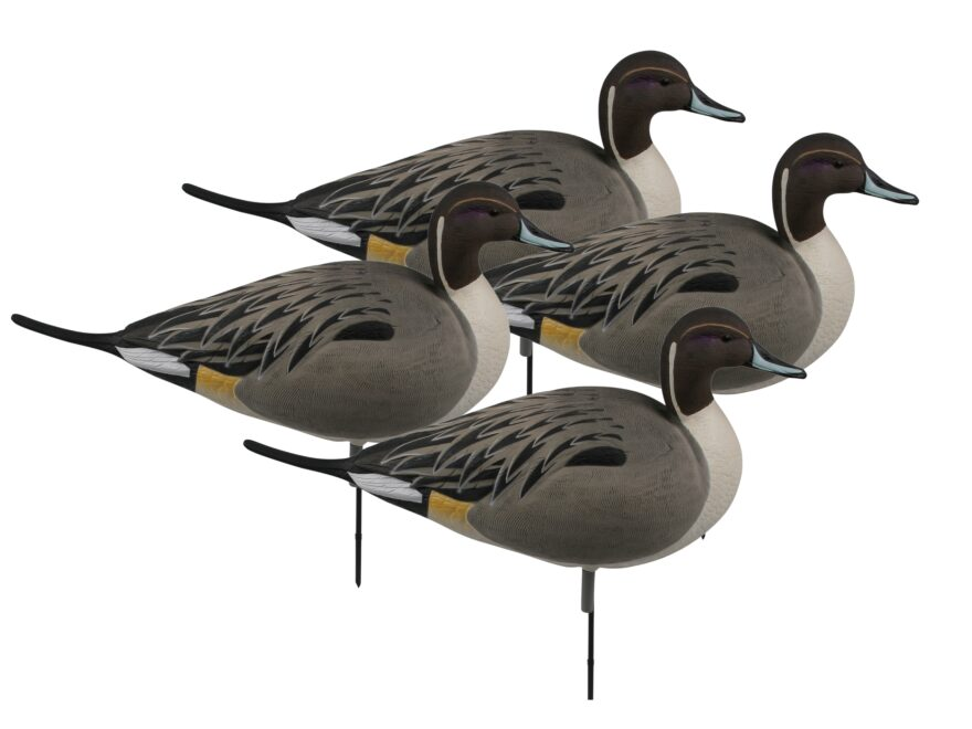 GHG Over-Size Active Pack Pintail Full Body Duck Decoy Pack of 4