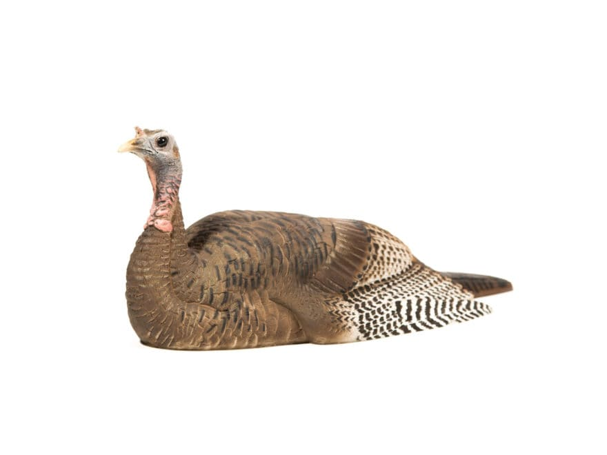 Dave Smith Decoys DSD Mating Hen Turkey Decoy