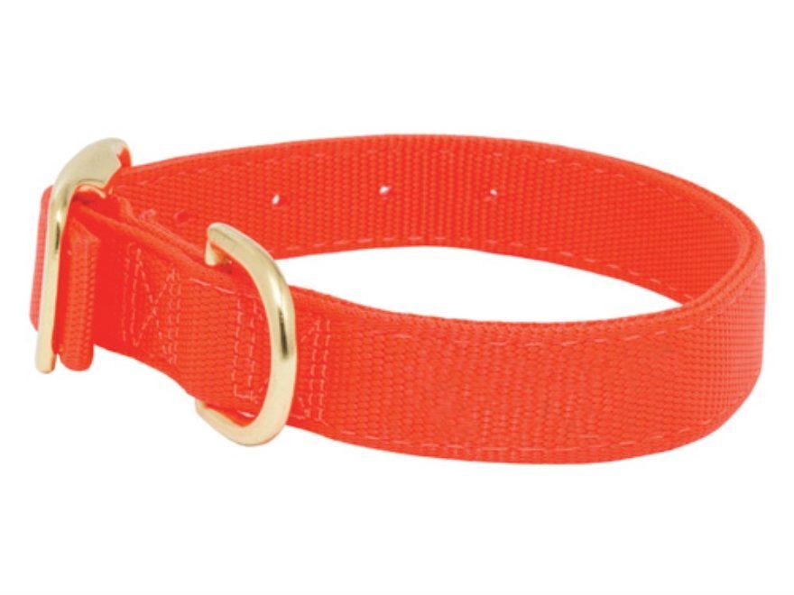 Blaze Orange Nylon Dog Collar