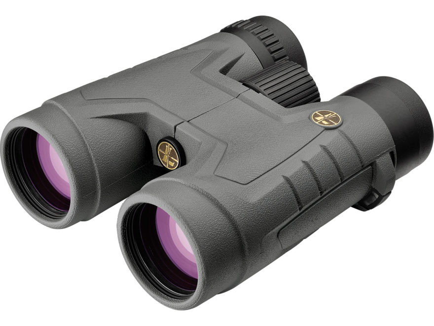 Leupold BX-2 Acadia Binocular 10x 42mm Roof Prism Shadow Gray