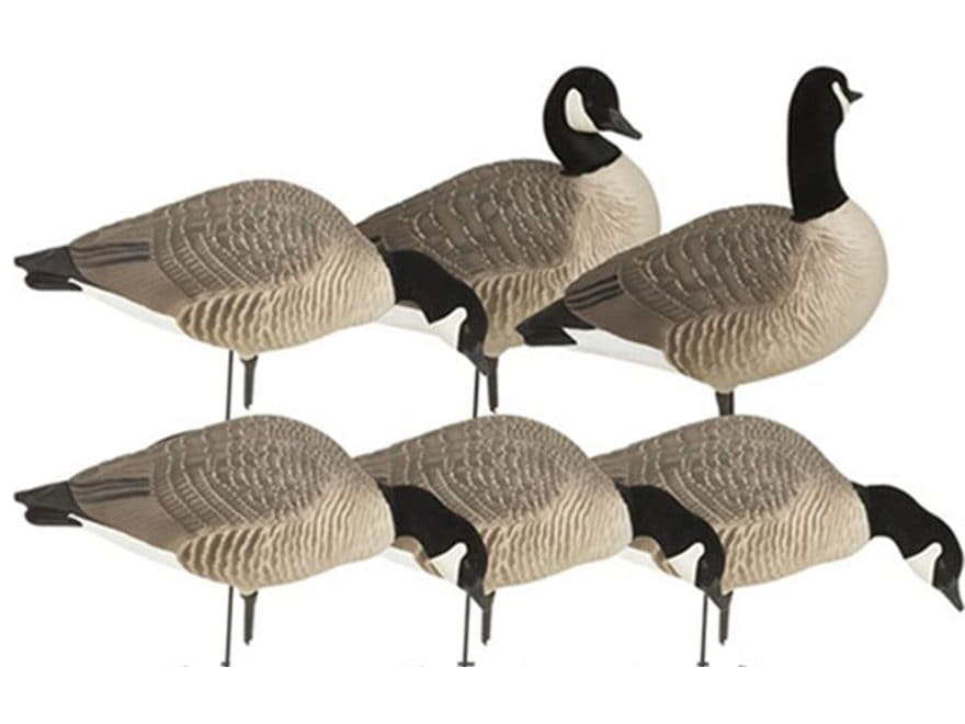 GHG Hunter Series Harvester Lesser Full Body Canada Goose Decoy Pack of 6