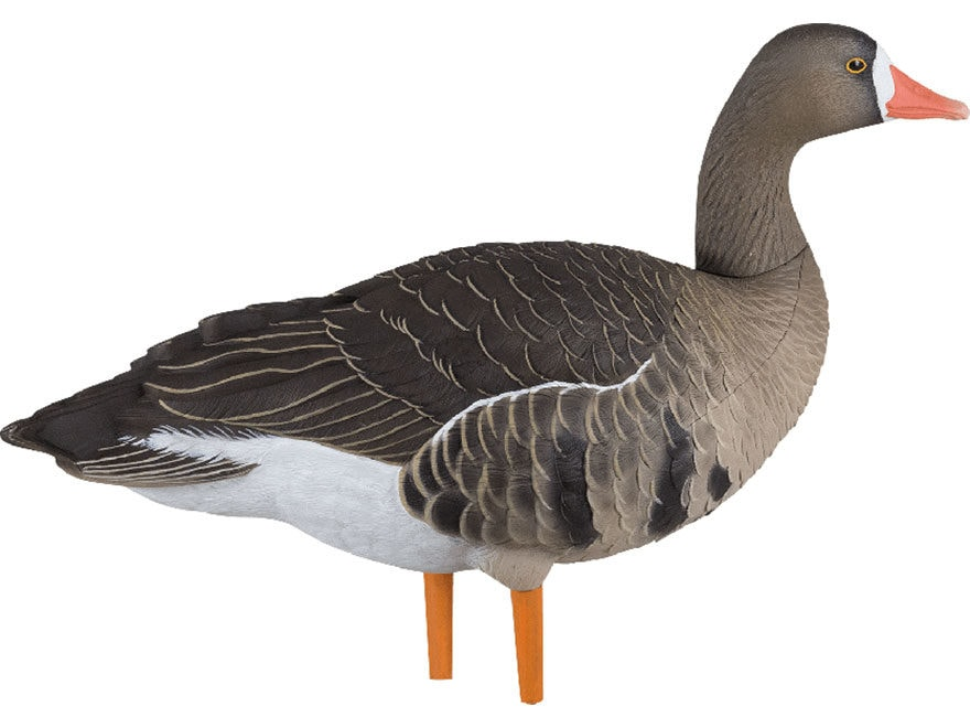 Avian-X AXF Flocked Specklebelly Full Body Goose Decoy Fusion Pack of 6
