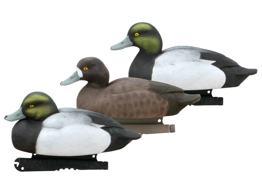 GHG Life-Size Blue Bill Duck Decoy Pack of 6