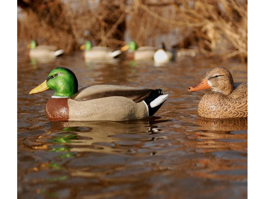 GHG Hot Buy Magnum Mallard Duck Decoy Pack of 6
