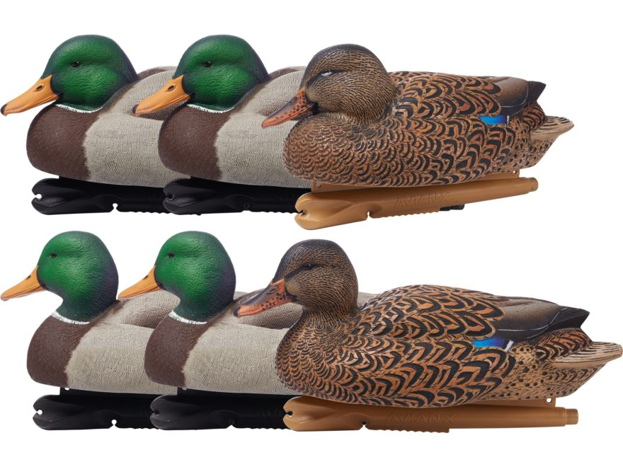 Avian-X Over-Size Mallard Duck Decoy Pack of 6