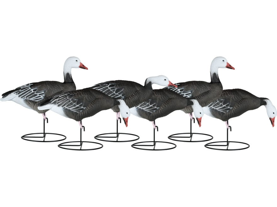 Dakota Decoy X-Treme Full Body Blue Goose Decoy Pack of 6