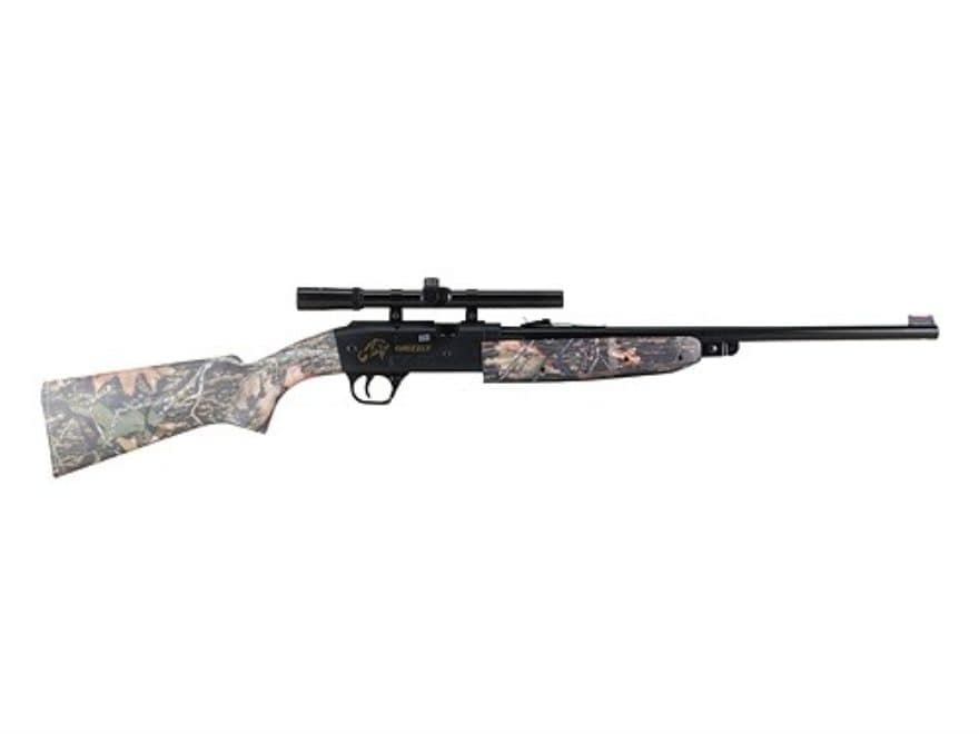Daisy 4841 Grizzly Pump 177 Caliber BB and Pellet Air Rifle with Scope