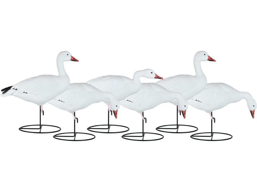Dakota Decoy X-Treme Full Body Snow Goose Decoy Pack of 6