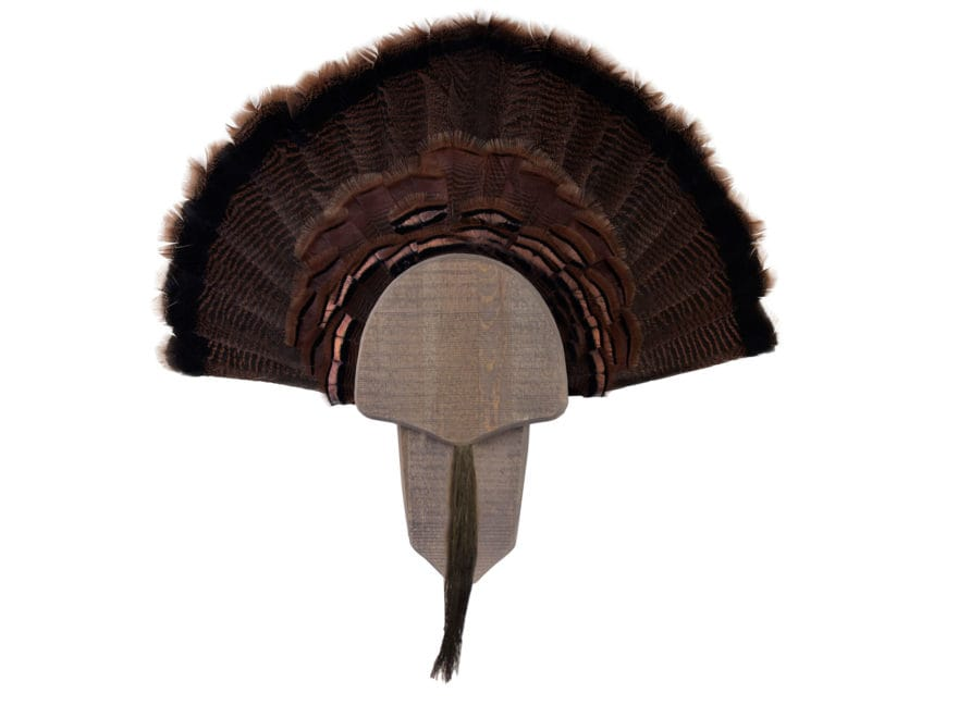 Walnut Hollow Country Rustic Turkey Mounting Kit