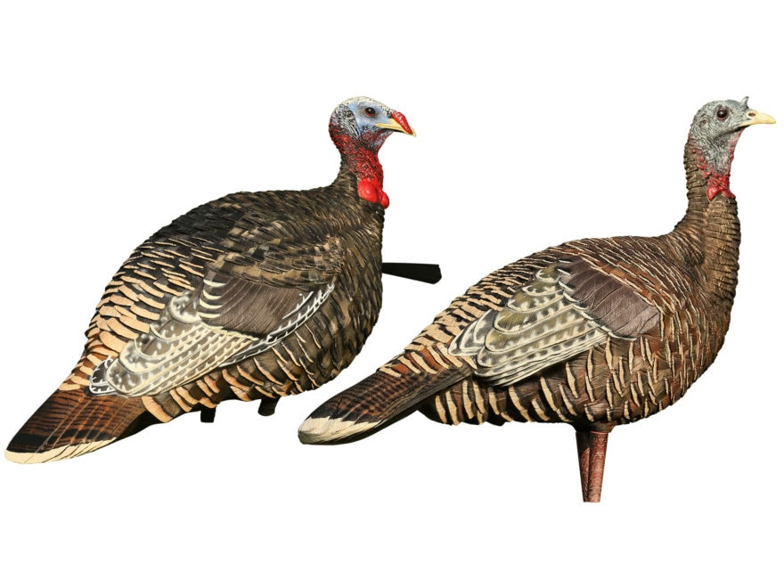 Avian-X LCD Rio Grande Hen Lookout and Jake Turkey Decoy Combo