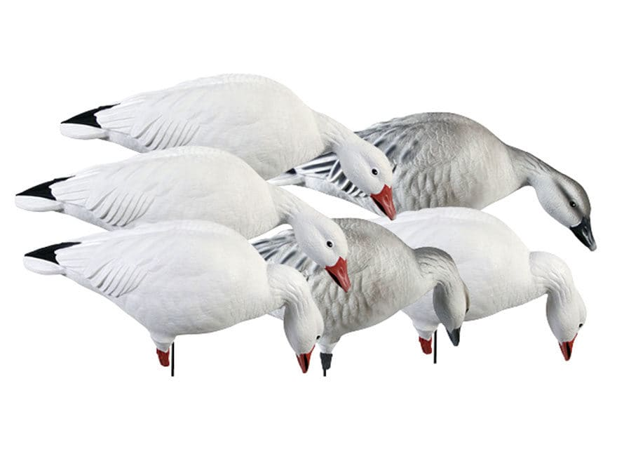 GHG Pro-Grade Feeder Pack Full Body Snow Goose Decoy Pack of 6