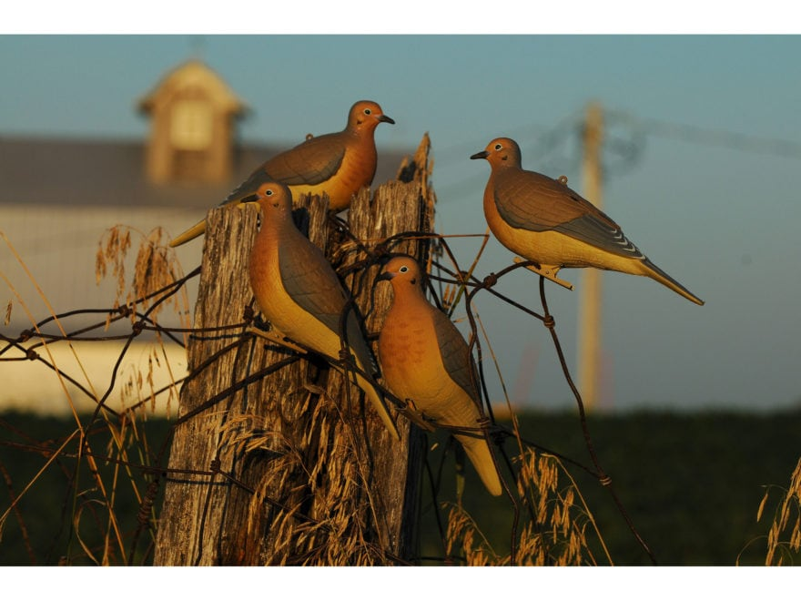 GHG Mourning Dove Decoy Pack of 6
