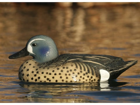 GHG Life-Size Blue Wing Teal Duck Decoy Pack of 6