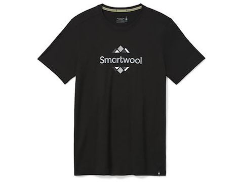 Smartwool Men's Sport 150 Logo Short Sleeve T-Shirt