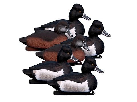 Higdon Standard Ringneck Duck Decoy Polymer Pack of 6