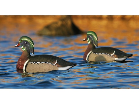 GHG Life-Size Wood Duck Decoy Pack of 6