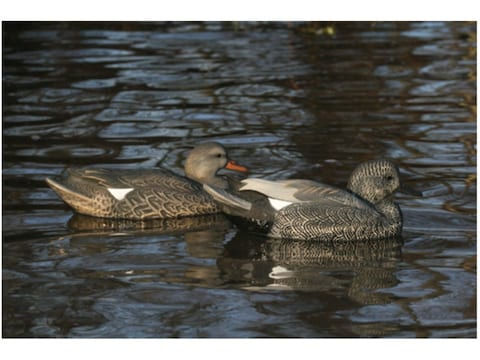 GHG Life-Size Weighted Keel Gadwall Duck Decoys Pack of 6