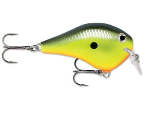 Rapala DT (Dives To) Series Fat 01 Crankbait Chartreuse Shad