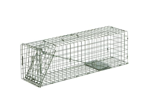 Duke #2 Single Door Cage Trap Steel Green