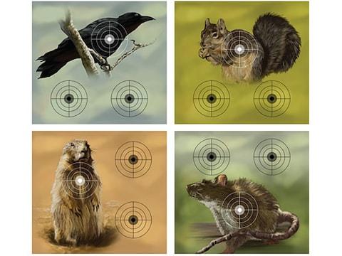 Crosman Varmint Air Gun Target Pack Crow, Squirrel, Prairie Dog or Rat Target Paper Pac...