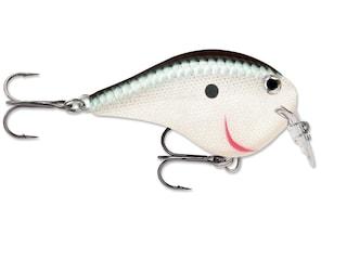Rapala DT (Dives To) Series Fat 01 Crankbait Silver