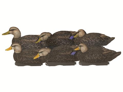 GHG XD Series Pro-Grade Black Duck Decoy Pack of 6