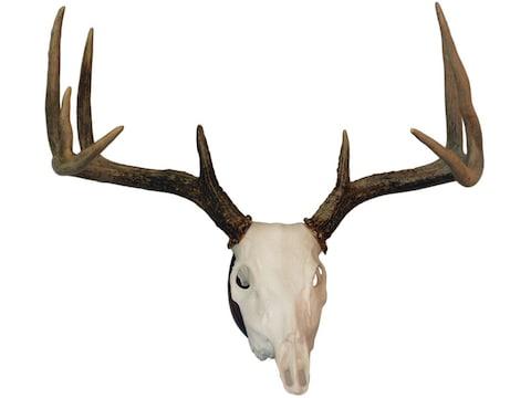 Hunter's Specialties European Skull Deer Mounting Kit