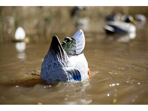 MOJO Butt Up Rippler Motion Duck Decoy