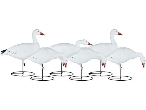 Dakota Decoy X-Treme Full Body Snow Goose Decoy Pack of 6