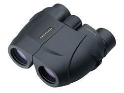 Leupold BX-1 Rogue Compact Binocular 25mm Porro Prism Armored Black