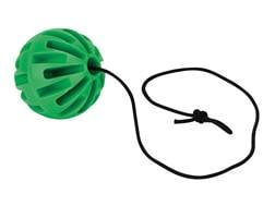 "Champion DuraSeal Ground Bounce Hanging Ball 3"" Ballistic Polymer Green"