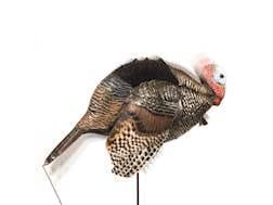 Dave Smith Decoys DSD Mating Motion Jake Turkey Decoy