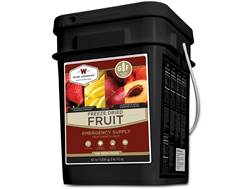 Wise Company Gluten Free 152 Serving Fruit Freeze Dried Food Kit