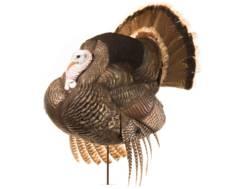 Dave Smith Decoys DSD White Faced Strutter Turkey Decoy
