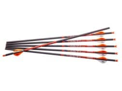 """Ravin 20"""" Carbon Crossbow Bolt 2"""" Vanes .003 Straightness Black Pack of 6"""