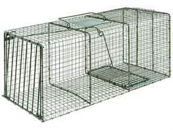 Duke HD X-Large Heavy Duty Single Door Cage Trap Steel Silver