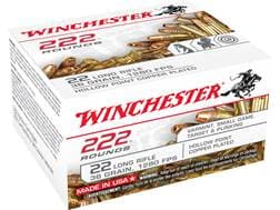 Winchester Ammunition 22 Long Rifle 36 Grain Plated Lead Hollow Point Case of 2220 (10 Boxes of 222)