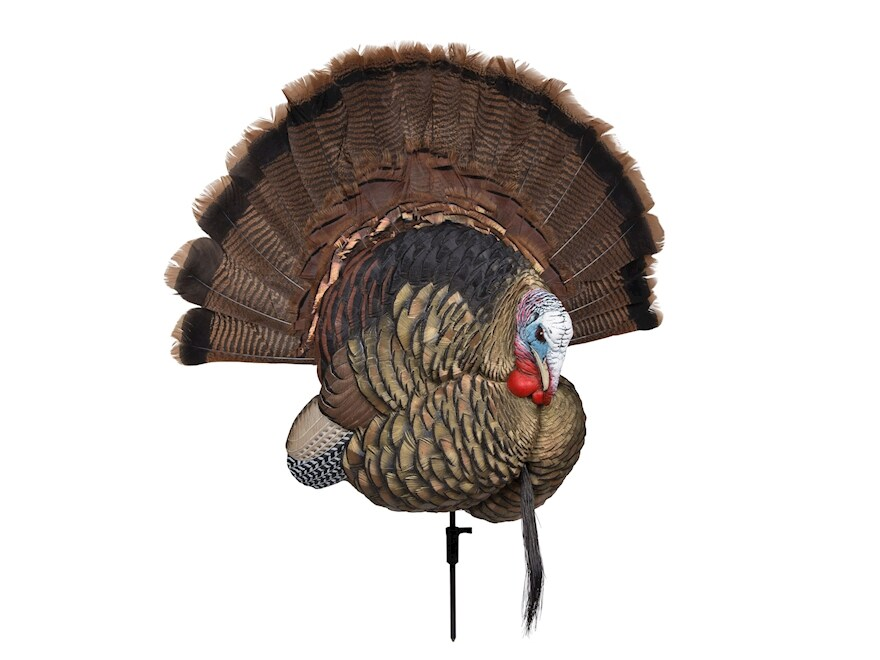 Avian-X Turkey Taxidermy Mounting Kit