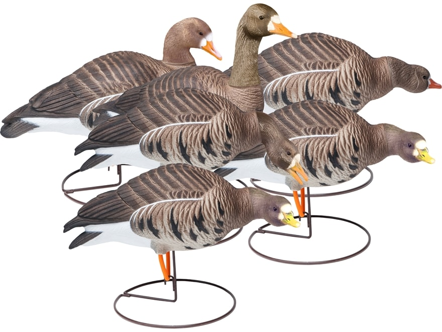 Final Approach Last Pass HD Outfitter Pack Full Body Specklebelly Goose Decoy Pack of 6